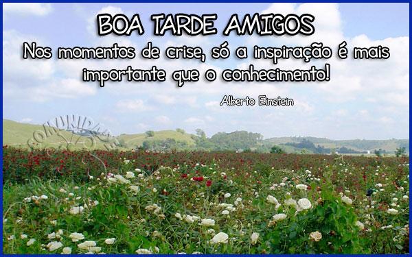Boa-Tarde-16